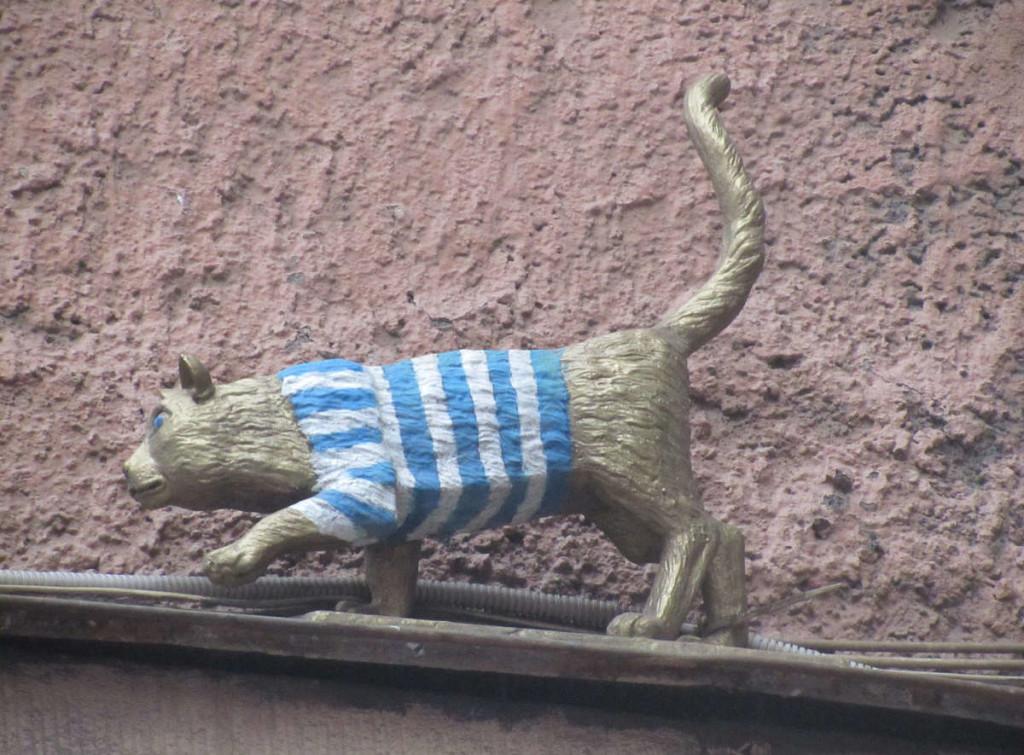день петерб котов