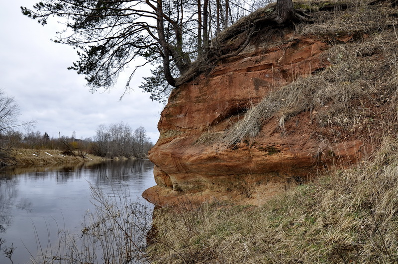 Ленобласть детям. Луга. Обнажения на реке Саба. Памятник природы