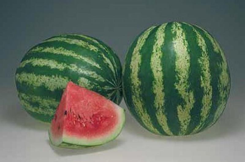 Вкусные сорта арбуза. «Кримсон Свит»