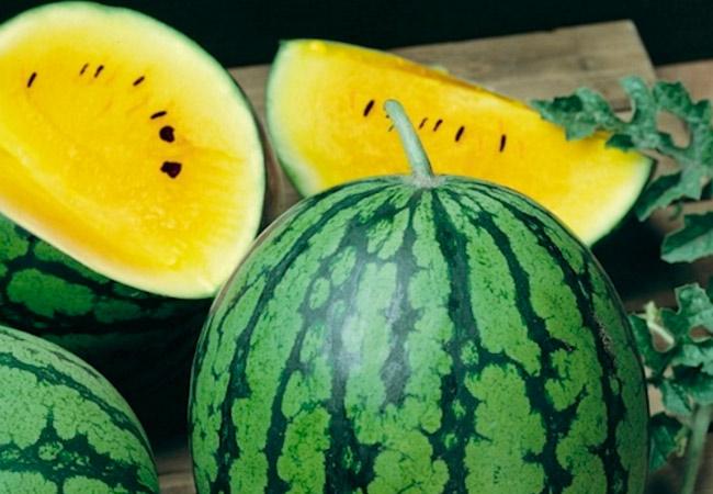 Вкусные сорта арбуза. «Лунный»