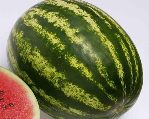 Вкусные сорта арбуза. «Топ ган»