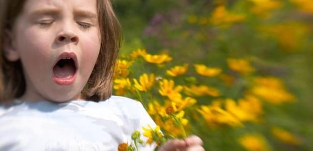 Всемирный День борьбы с аллергией