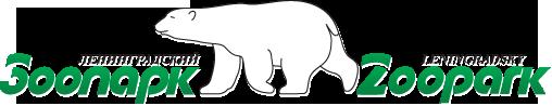 зоопарк проводит конкурс по предложениям имен для животных