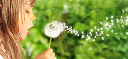 Необычные и неофициальные праздники октября: как отмечать. День аллерголога