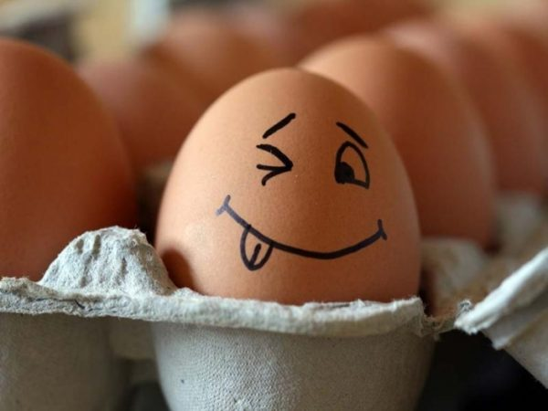 Необычные и неофициальные праздники октября: как отмечать. Всемирный день яйца