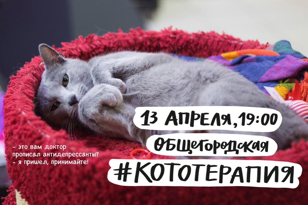 В Петербурге пройдет Замурчательная Кототерапия с элементами арт-терапии