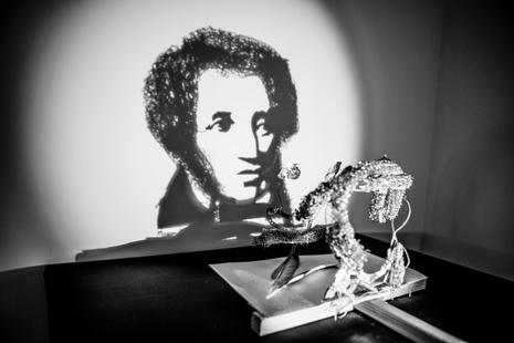 В Петербурге появился музей теней