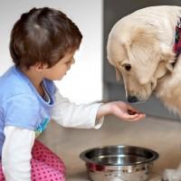 Как сообщить ребенку о смерти домашнего животного