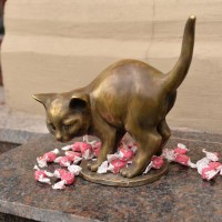 День рождения котенка Фунтика