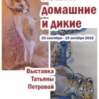 «Кошки домашние и дикие» — на выставке в «Республике кошек»