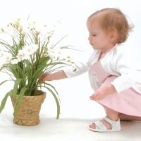 Цветы в детскую комнату