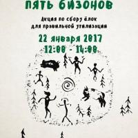 Экологическая акция «Ёлки, палки, пять бизонов», или утилизируем елку правильно